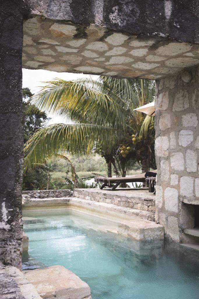 coqui coqui coba mexico yucatan